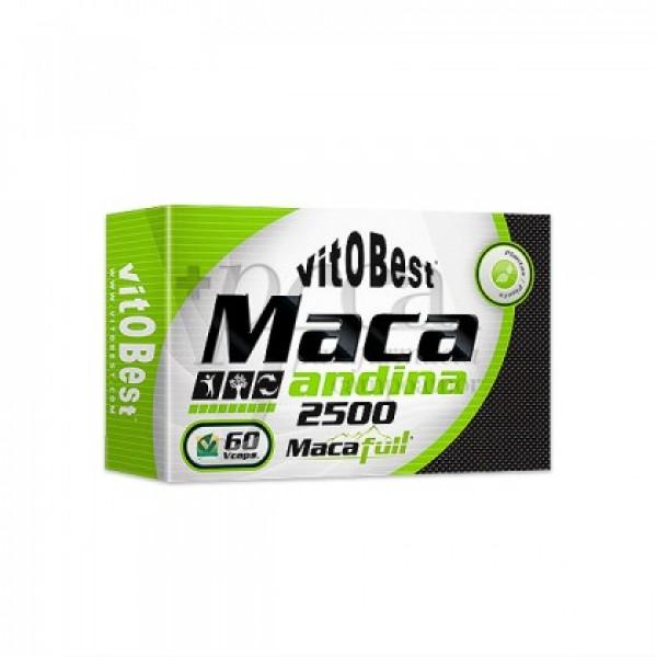 MACA ANDINA 60 CAPSULAS VITOBEST